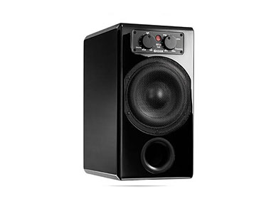 buy online Adam Sub 10 MKII Sub Woofer with free home delivery